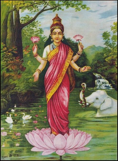 Goddess Lakshmi Lotus Flower Inspiration