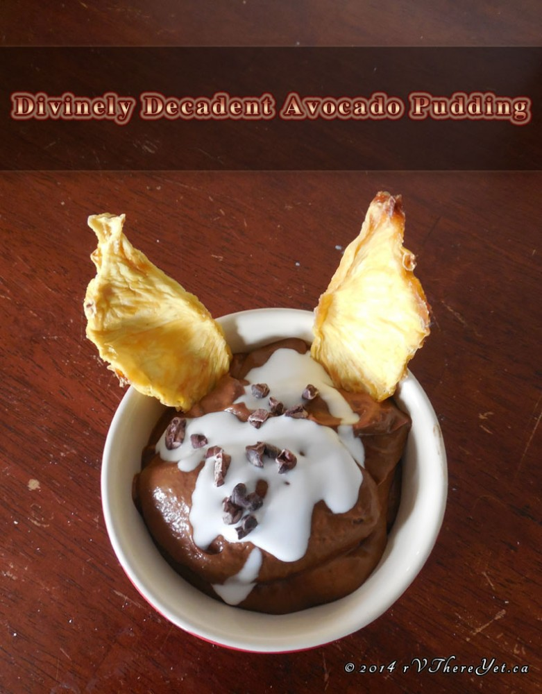 Divinely Decadent Avocado Pudding